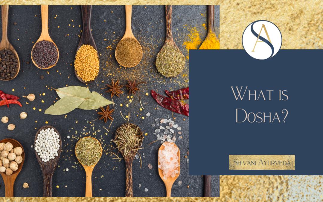 What is Dosha?